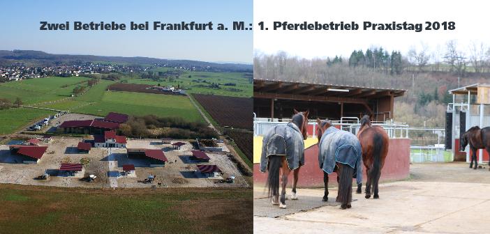 Pferdebetrieb Praxistag – Frankfurt a.M. – April 2018