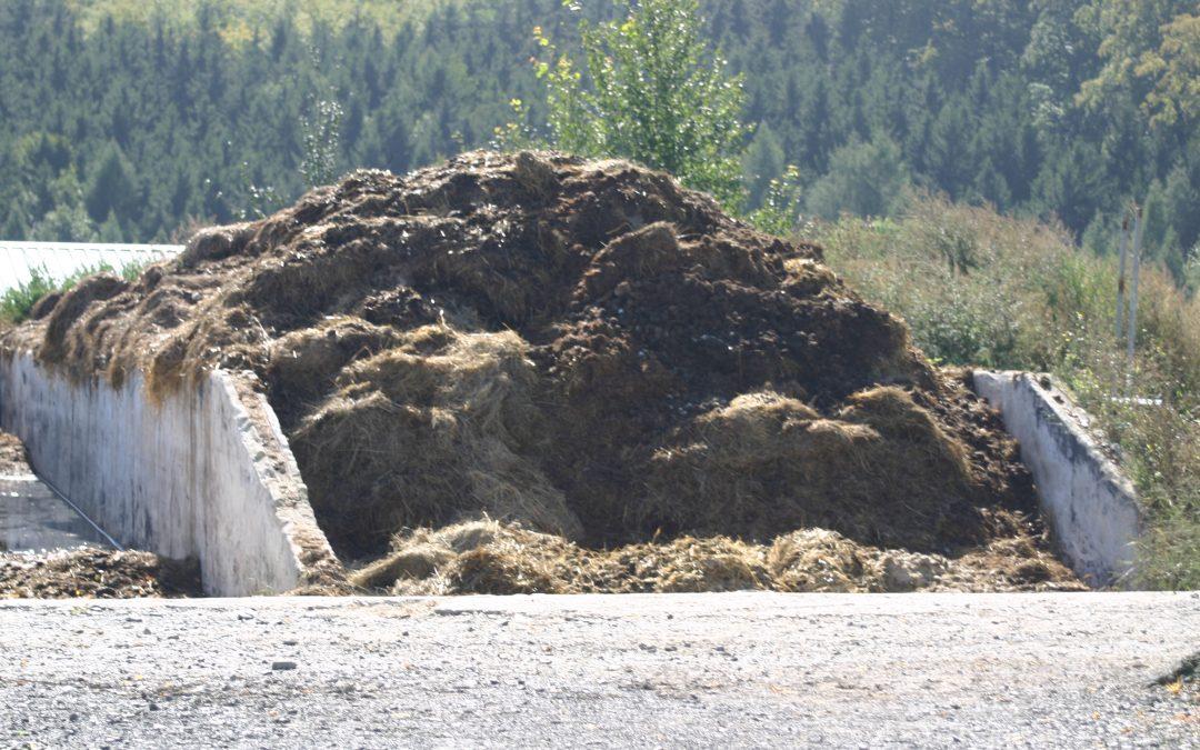 Nitrat im Trinkwasser – Falschmeldung